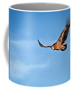 Griffon Vulture Coffee Mug