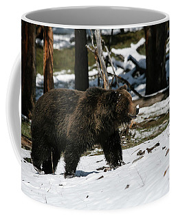 Coffee Mug featuring the photograph Grizzly Bear by Gary Hall