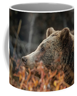 Grizzly Bear Portrait In Fall Coffee Mug