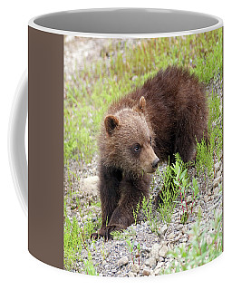 Grizzly Cub II Coffee Mug