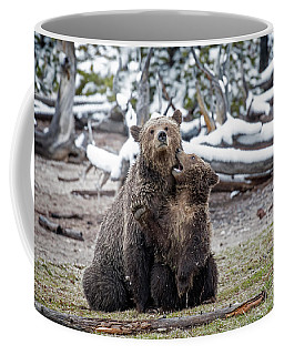 Grizzly Cub Playing With Mother Coffee Mug