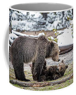 Grizzly Cub With Mother Coffee Mug