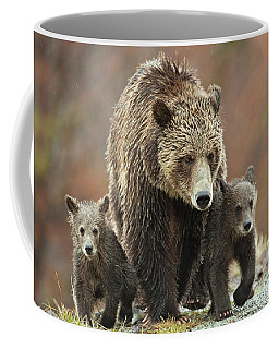 Grizzly Family Coffee Mug
