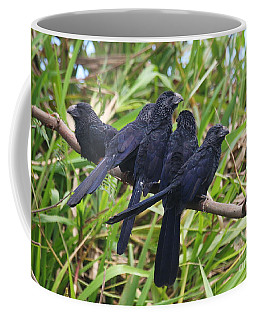 Groove-billed Ani Gathering Coffee Mug by Myrna Bradshaw