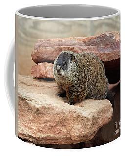 Groundhog Coffee Mug