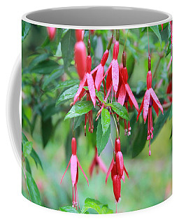 Coffee Mug featuring the photograph Growing In Red And Purple by Laddie Halupa