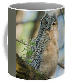 Growing Into A Great Horned Owl Coffee Mug
