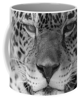 Grumpy Tiger  Coffee Mug
