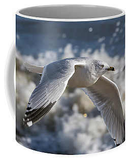 Gull At The Beach Coffee Mug