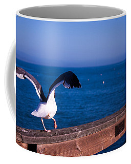 Gull Dance Coffee Mug