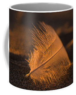 Gull Feather At Sunset Coffee Mug