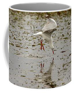 Gull Fishing 01 Coffee Mug