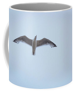 Gull Flight Coffee Mug by Michael Friedman