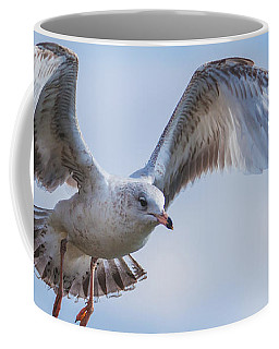 Gull Hover In Gray Coffee Mug