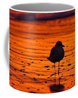 Gull Caught At Sunrise Coffee Mug
