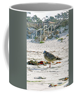 Gull On The Beach Coffee Mug