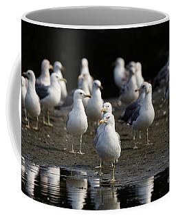 Gulls At The Beach Coffee Mug