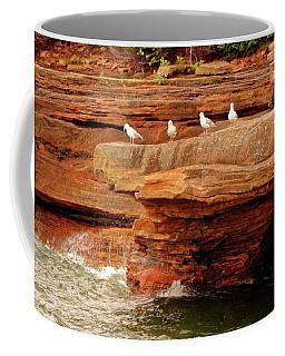Gulls On Outcropping Coffee Mug