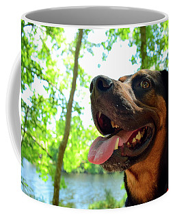 Gus On A Hike Coffee Mug