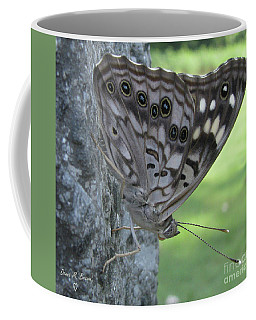 Hackberry Emperor Butterfly Coffee Mug by Donna Brown