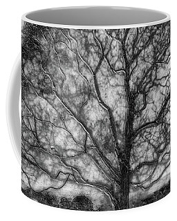 Hagley Tree 2 Coffee Mug