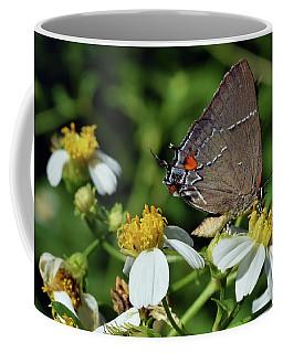 Hairstreak Butterfly Coffee Mug