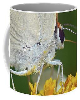 Hairstreak Closeup Coffee Mug