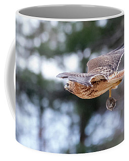 Coffee Mug featuring the photograph Hal Picking Up Dinner 2 by Brian Hale