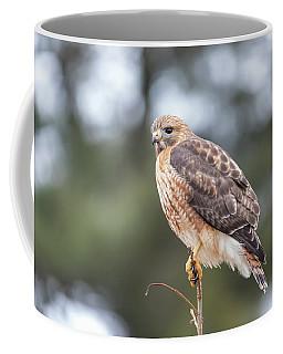 Hal The Hybrid Portrait 3 Coffee Mug