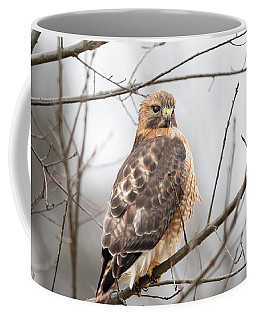 Hals Nicitating Membrane Coffee Mug