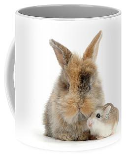 Ham And Bun Coffee Mug