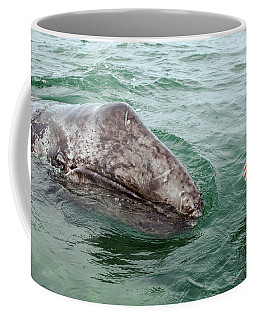 Hand Across The Waters Coffee Mug