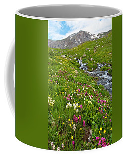 Coffee Mug featuring the photograph Handie's Peak And Alpine Meadow by Cascade Colors