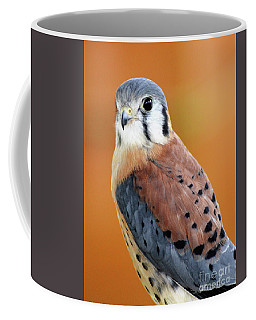 Handsome American Kestrel Coffee Mug