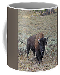 Handsome Bison Bull Coffee Mug