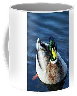 Handsome Male Mallard Coffee Mug