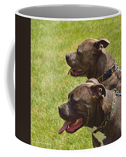 Handsome Pit Bulls Coffee Mug by Kae Cheatham