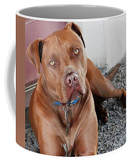 Handsome Red Nose Pit Jak Coffee Mug