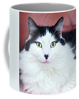 Coffee Mug featuring the photograph Handsome Tuxy by Byron Varvarigos