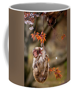 Coffee Mug featuring the photograph Hang In There, Baby Redux by Rikk Flohr