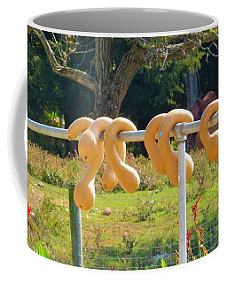 Coffee Mug featuring the photograph Hang In There by Jeanette Oberholtzer