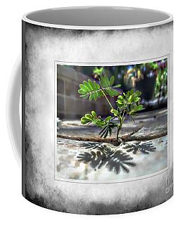 Hang On Baby Coffee Mug