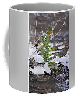 Coffee Mug featuring the photograph Hanging In There by Ron Cline