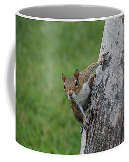Coffee Mug featuring the photograph Hanging On by Rob Hans