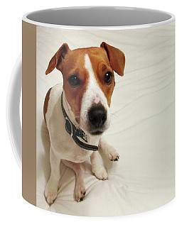 Happiness Is A Cute Puppy Coffee Mug