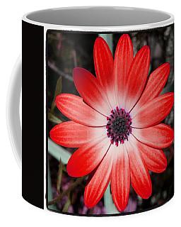 Coffee Mug featuring the photograph Happy Birthday Carl by Mr Photojimsf