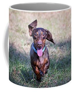 Happy Dachshund Coffee Mug
