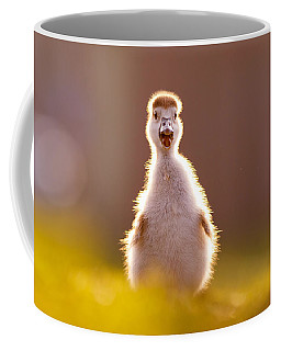 Happy Easter - Cute Baby Gosling Coffee Mug