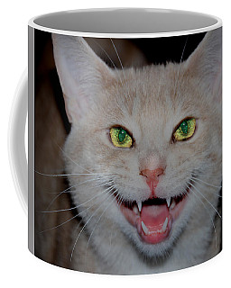 Happy For Spring Cat Coffee Mug