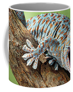 Coffee Mug featuring the photograph Happy Gecko by Nikolyn McDonald